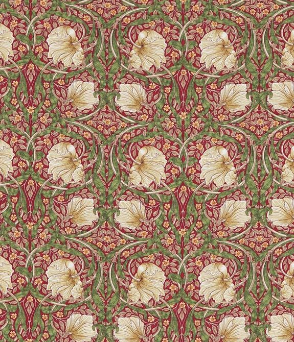 Pimpernel Red Thyme 226723