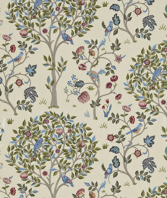 Kelmscott Tree Woad Rose 237206
